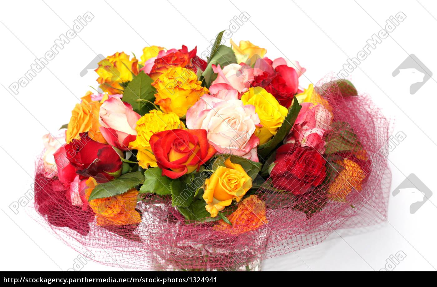 grown, roses - 1324941