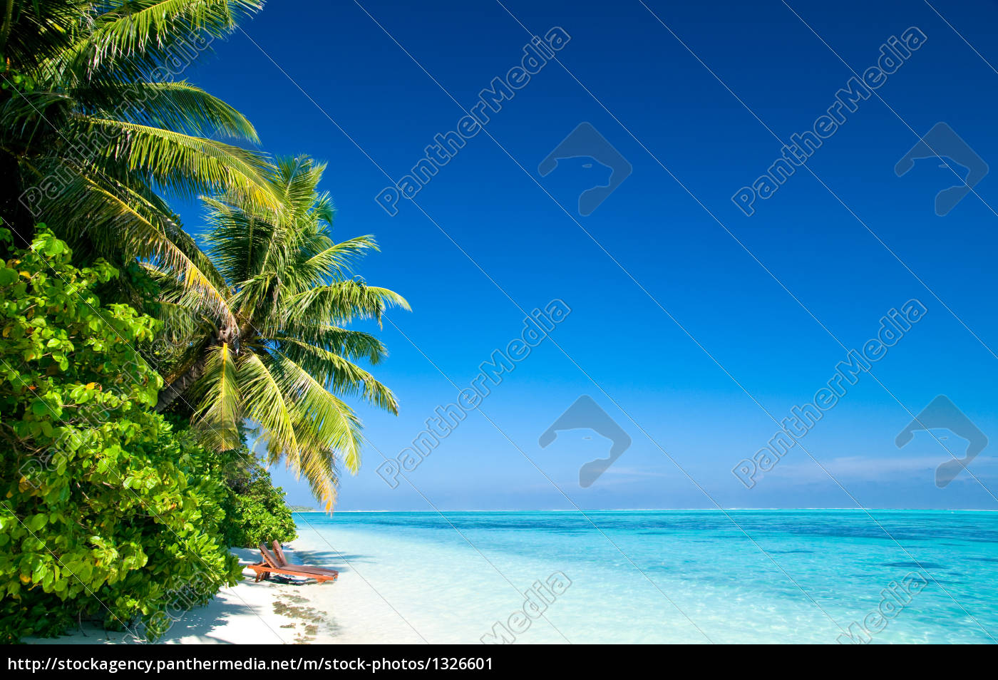 lonely, tropical, beach - 1326601