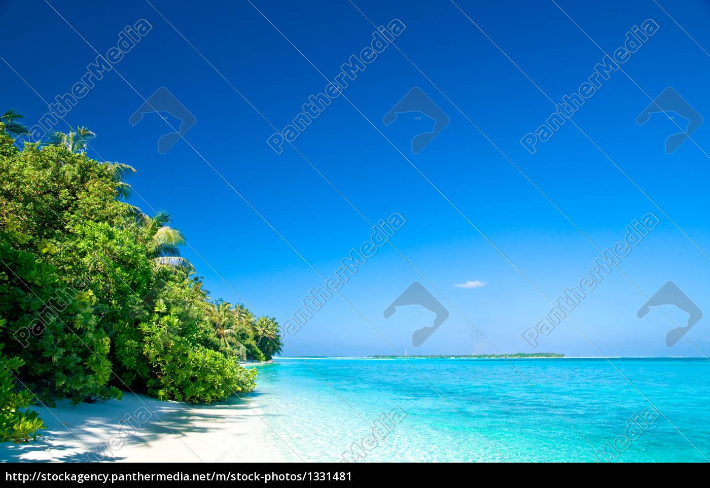 dream, beach - 1331481