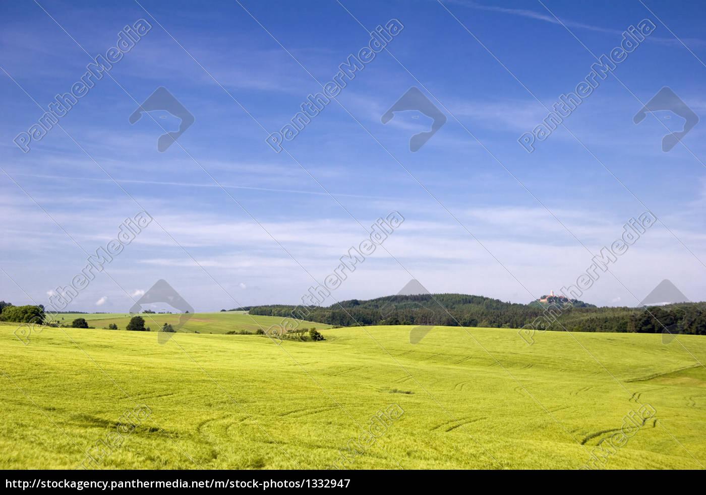 woodland, fields - 1332947