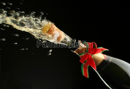 champagne, bottle, ready, for, celebration - 1338213