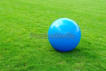 blue colour ball meadow lawn green