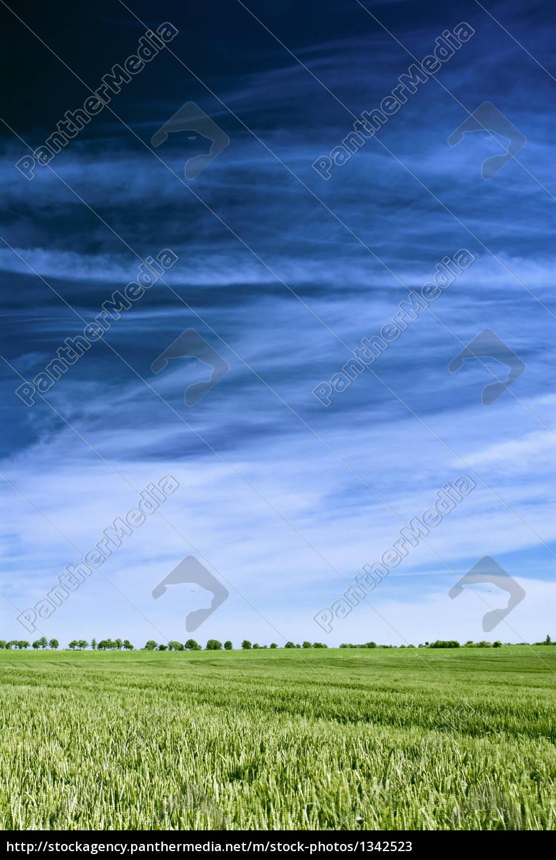 blue, sky - 1342523