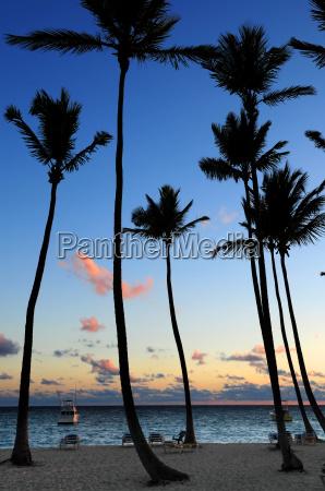 tropical, sunrise - 1346675