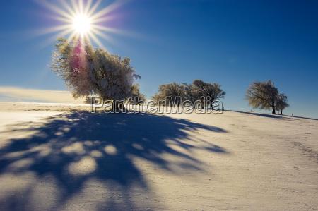 winter sun 5