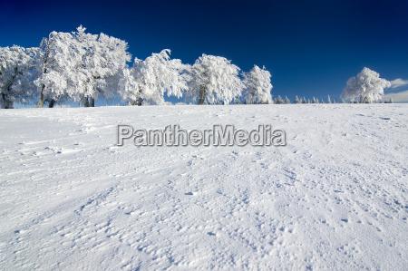 winter, sun, 3 - 1357425