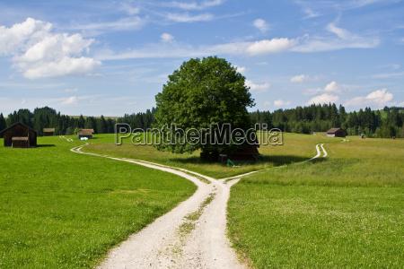 crossroads - 1361947