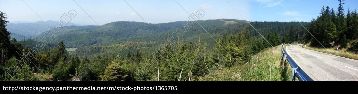 black, forest, panorama - 1365705