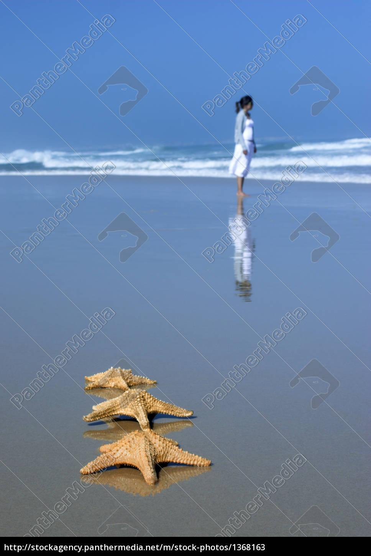 tree, starfishes - 1368163