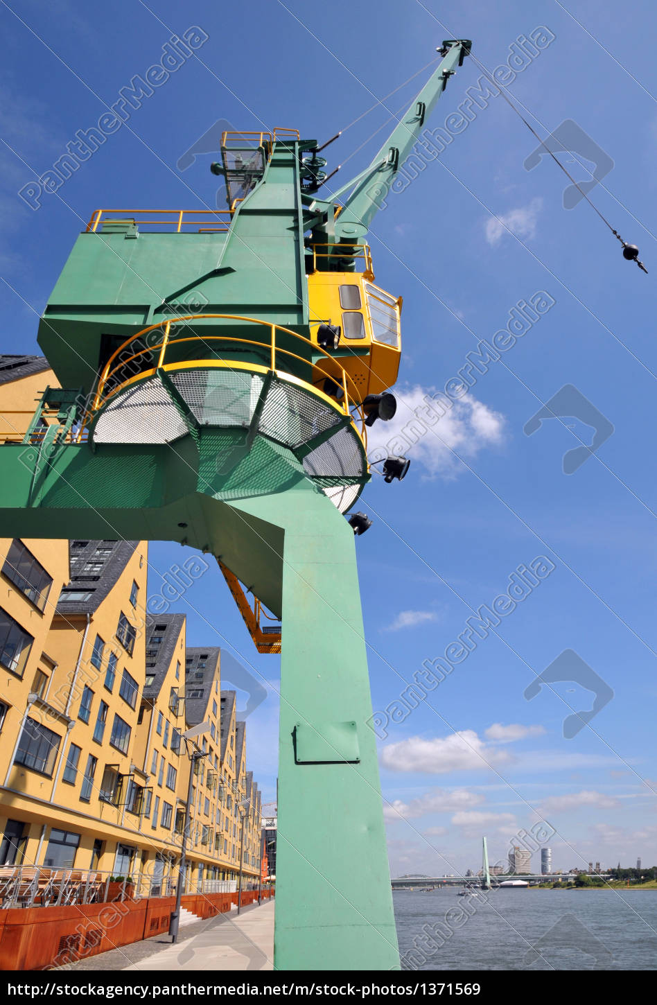 crane, on, the, banks, of, the - 1371569