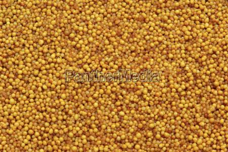 mineral, fertilizer, -, mineral, fertilizer, 07 - 1372885
