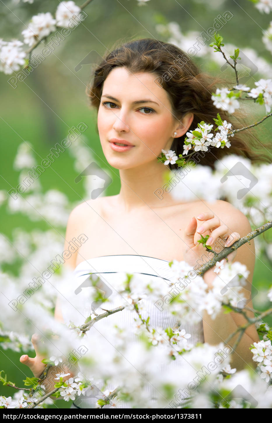 spring, beauty - 1373811