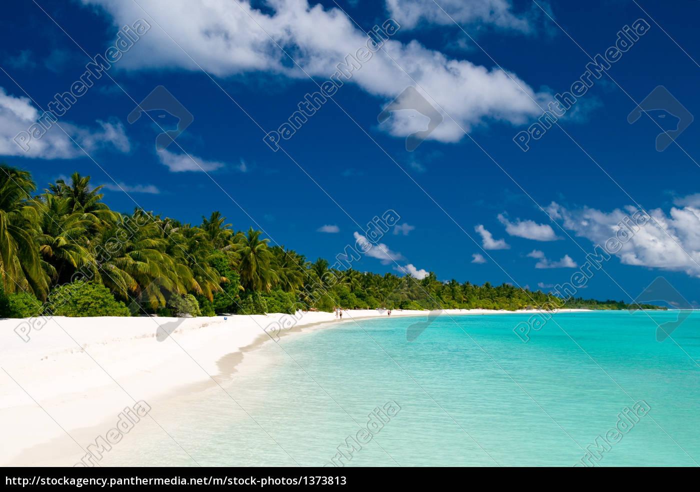tropical, dream, beach - 1373813