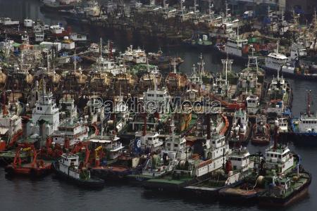many fishing boats in busan