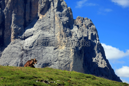 mountains dolomites south tyrol lie lying