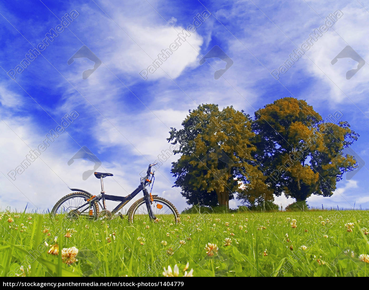 cycling, the, countryside - 1404779