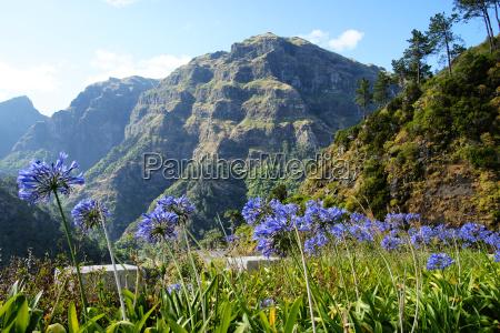 mountains, madeira - 1428357