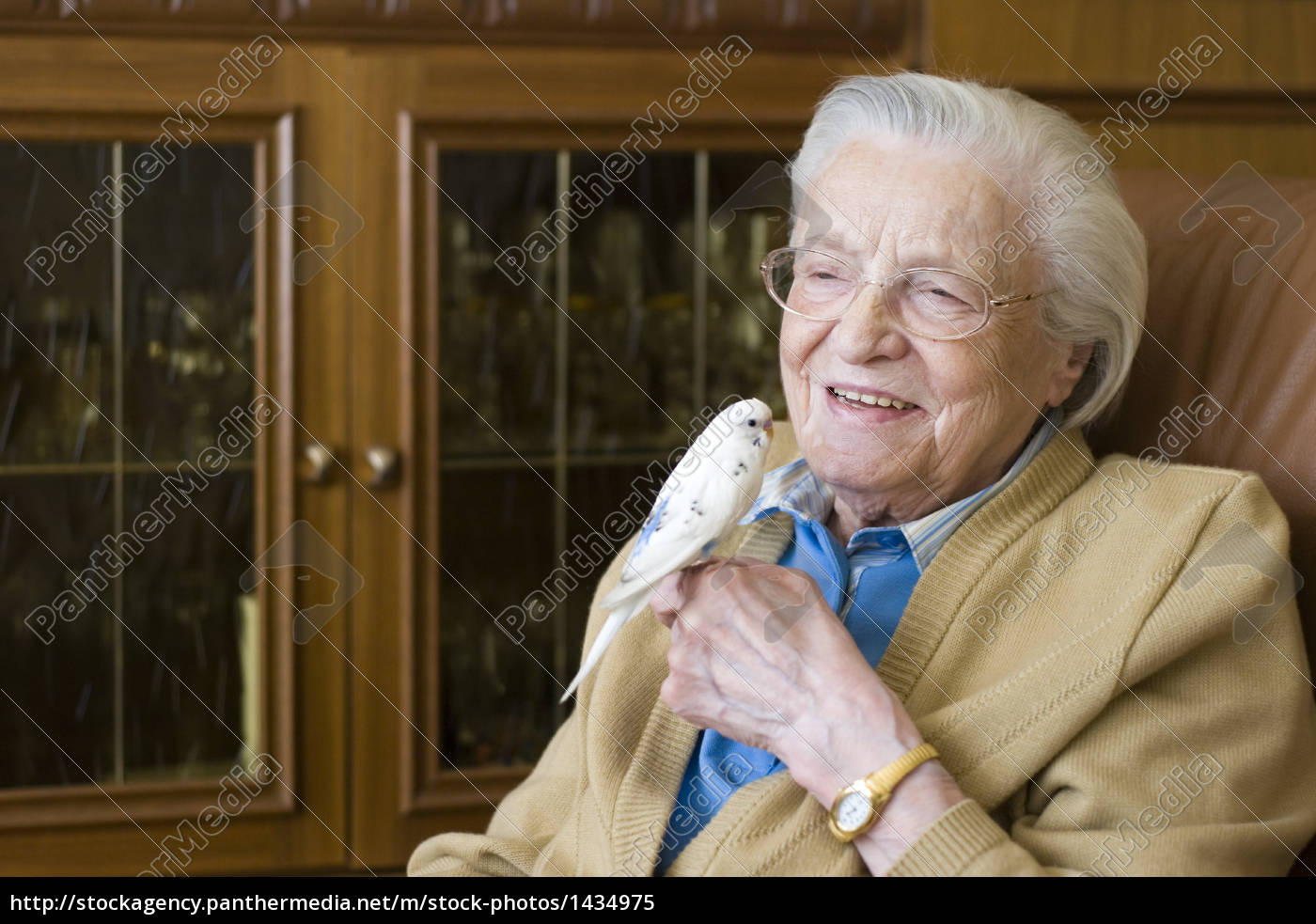 old, lady, with, budgie - 1434975