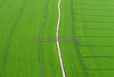 hike through green fields