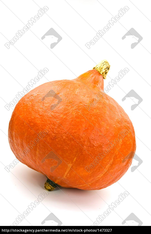hokkaido, -, pumpkin, -, on, white - 1473327