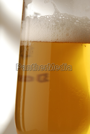 glass of beer on grey background