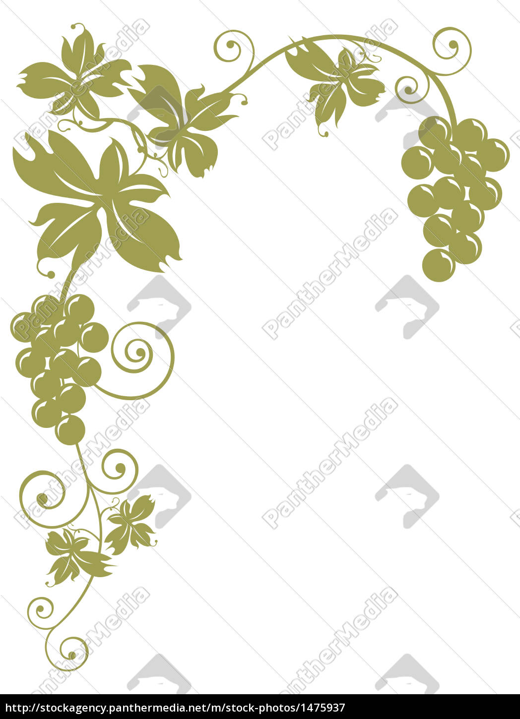 bunches, of, grapes - 1475937