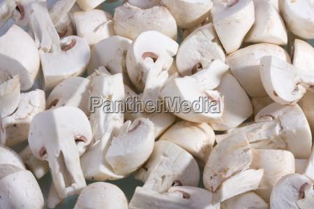 champignons auf weissem hintergrund