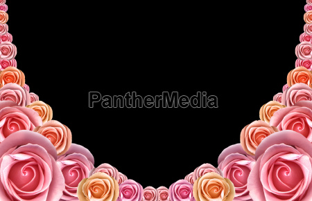framework, from, pink, roses - 1510221