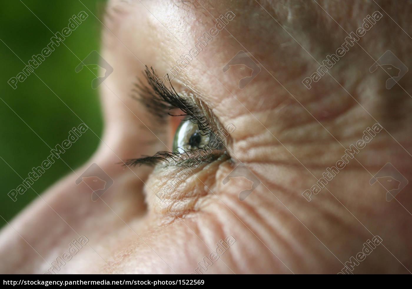 the, eye - 1522569