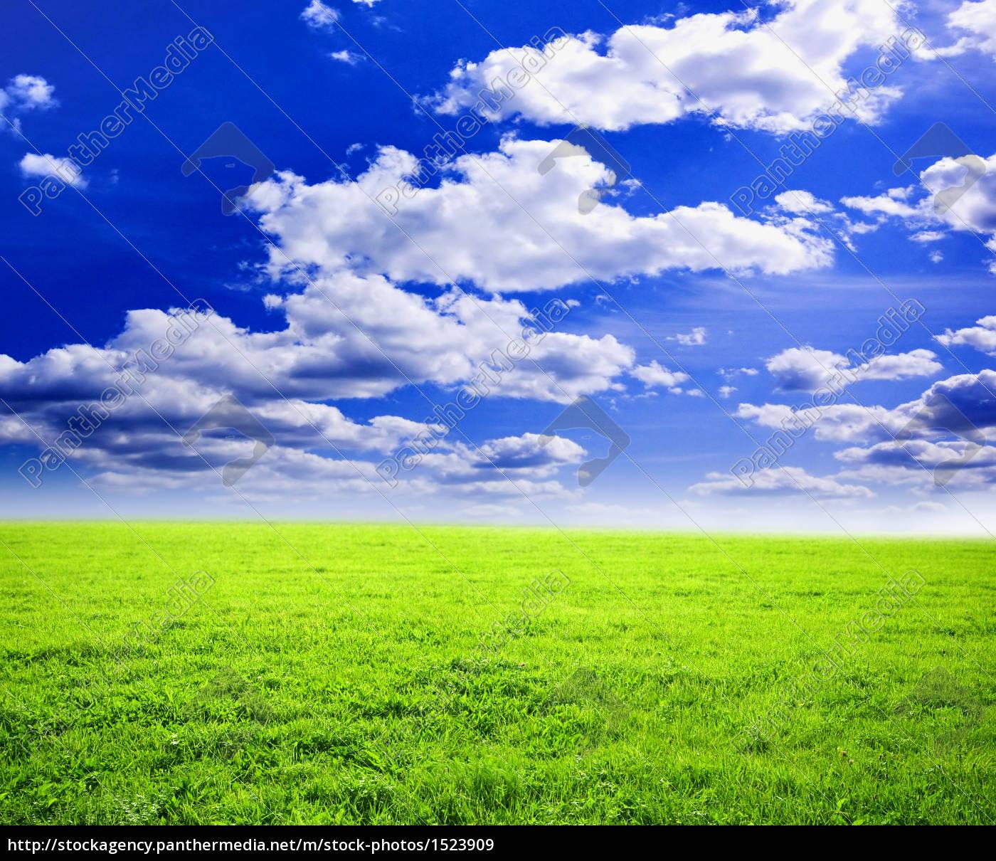 wonderful, summer, landscape - 1523909