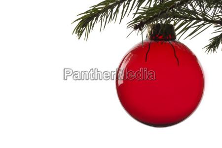 rote christbaumkugel am fichtenzweig