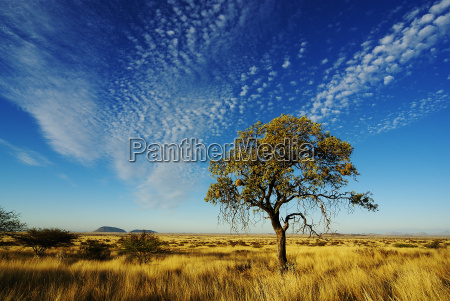 sky over namibia