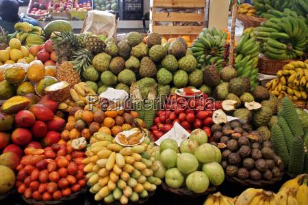 fruit - 1539925