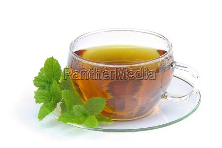 tea, peppermint, tea - 1553621