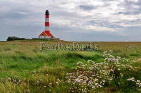 salt marsh and lighthouse