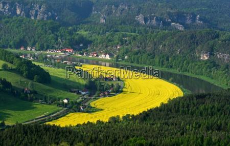 spring fields meadows elbe mountain river