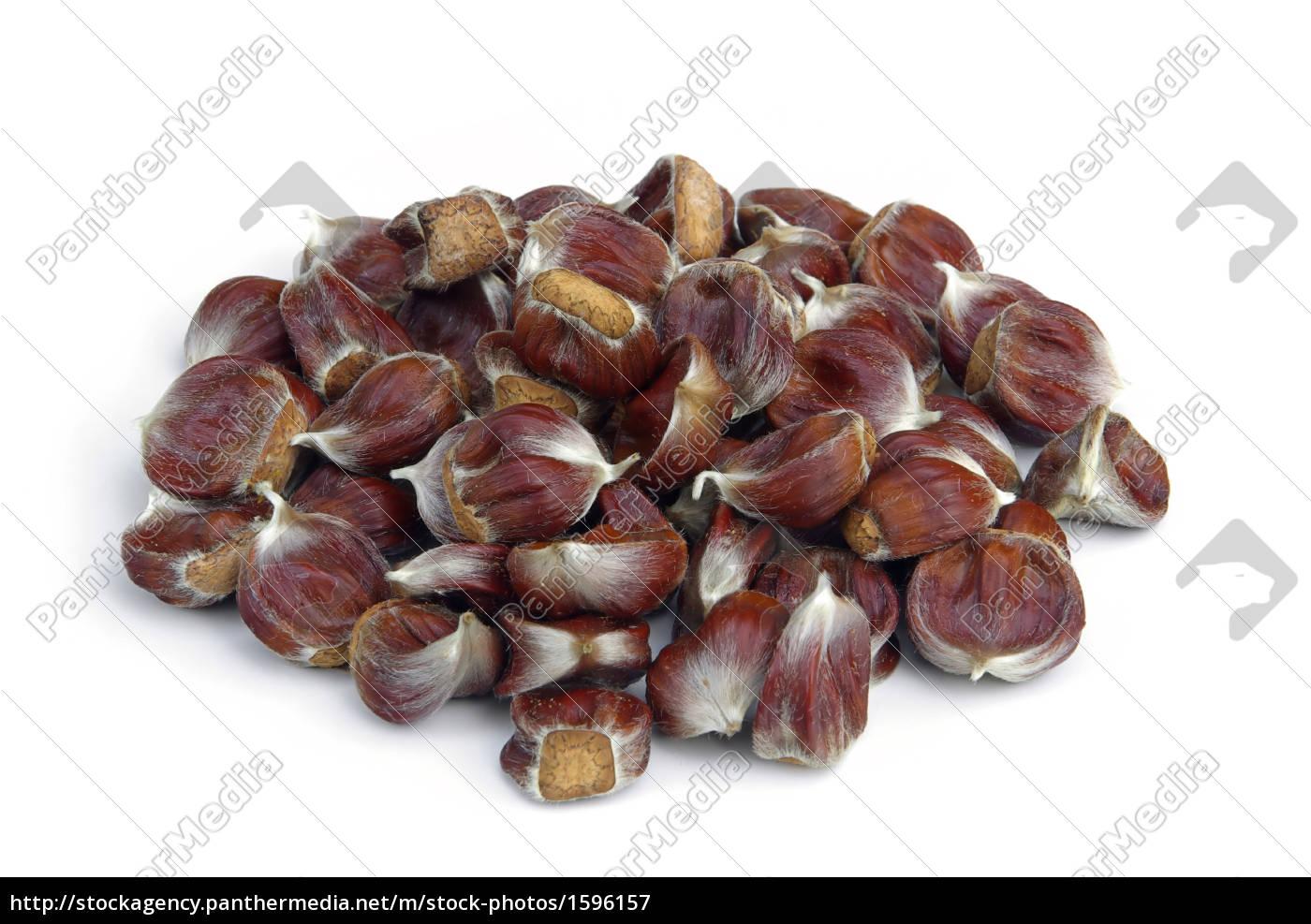 chestnut, -, sweet, chestnut, 06 - 1596157
