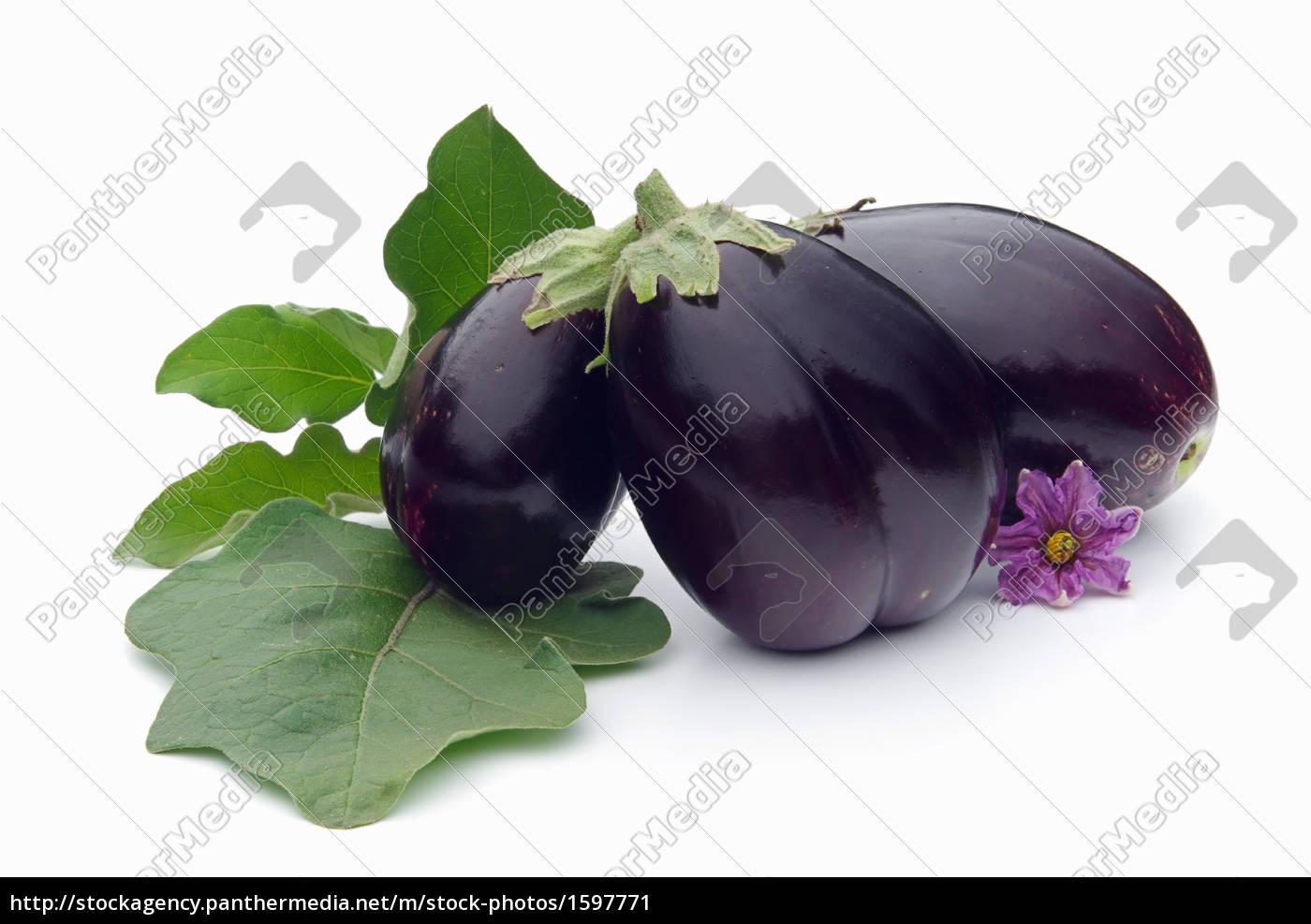 aubergine, 08 - 1597771