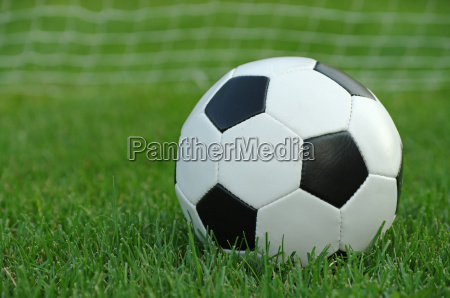 soccer ball in the grass with