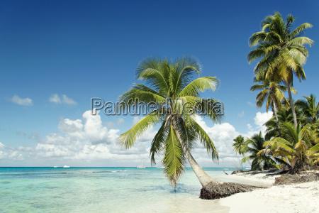 caribbean, beach - 1619873