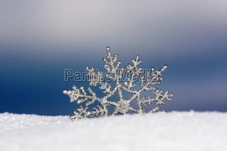 the, winter, is, here - 1662525