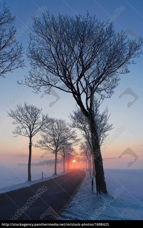 winter, morning, 1 - 1698425