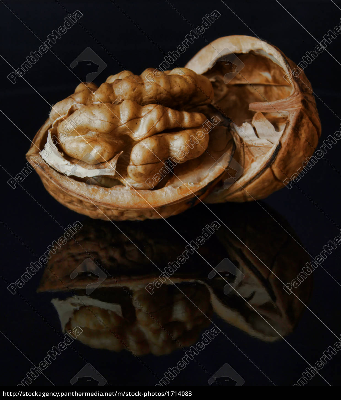 walnut - 1714083