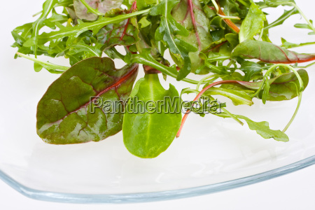 detail of salad leaves