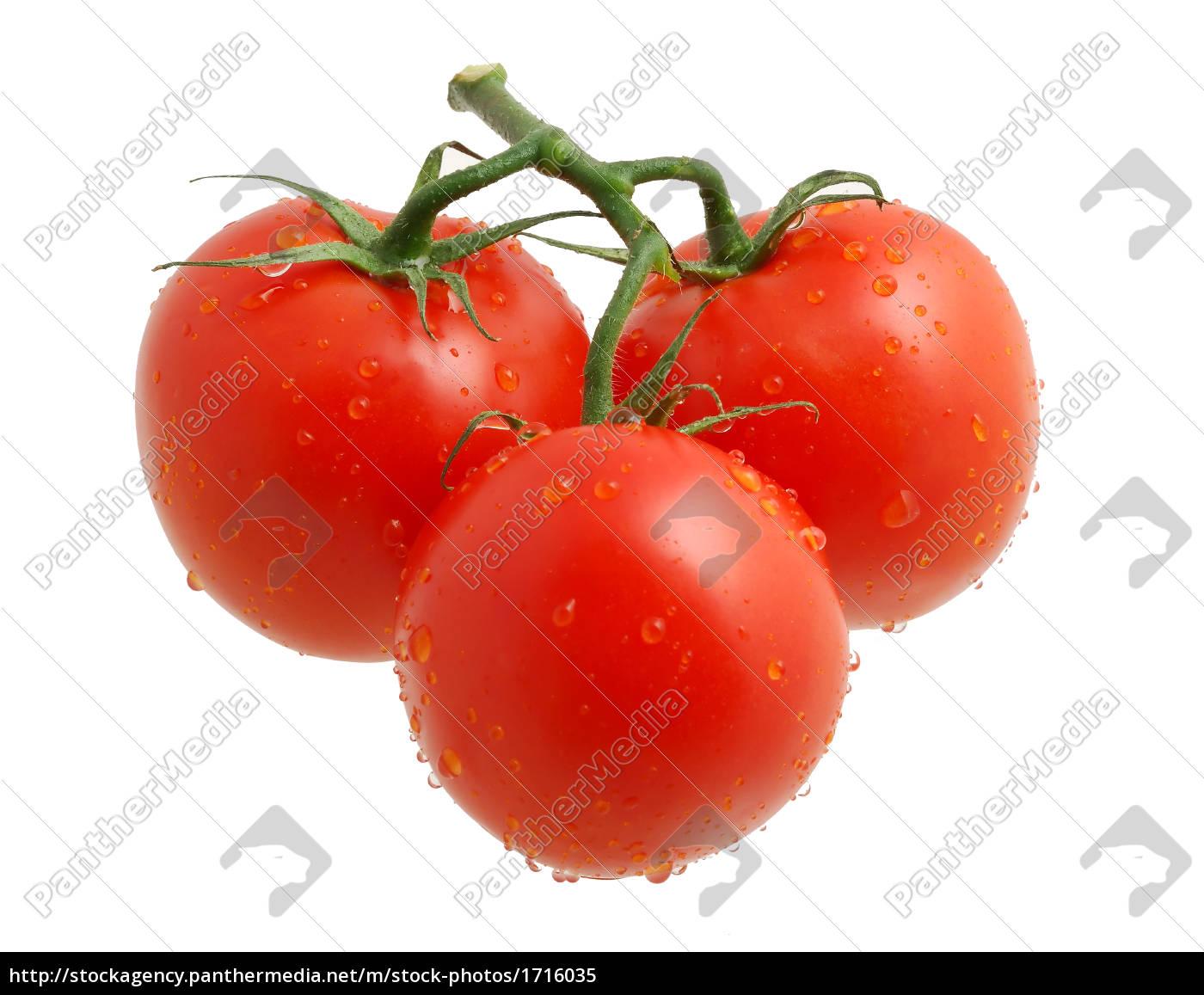 three, tomatos - 1716035