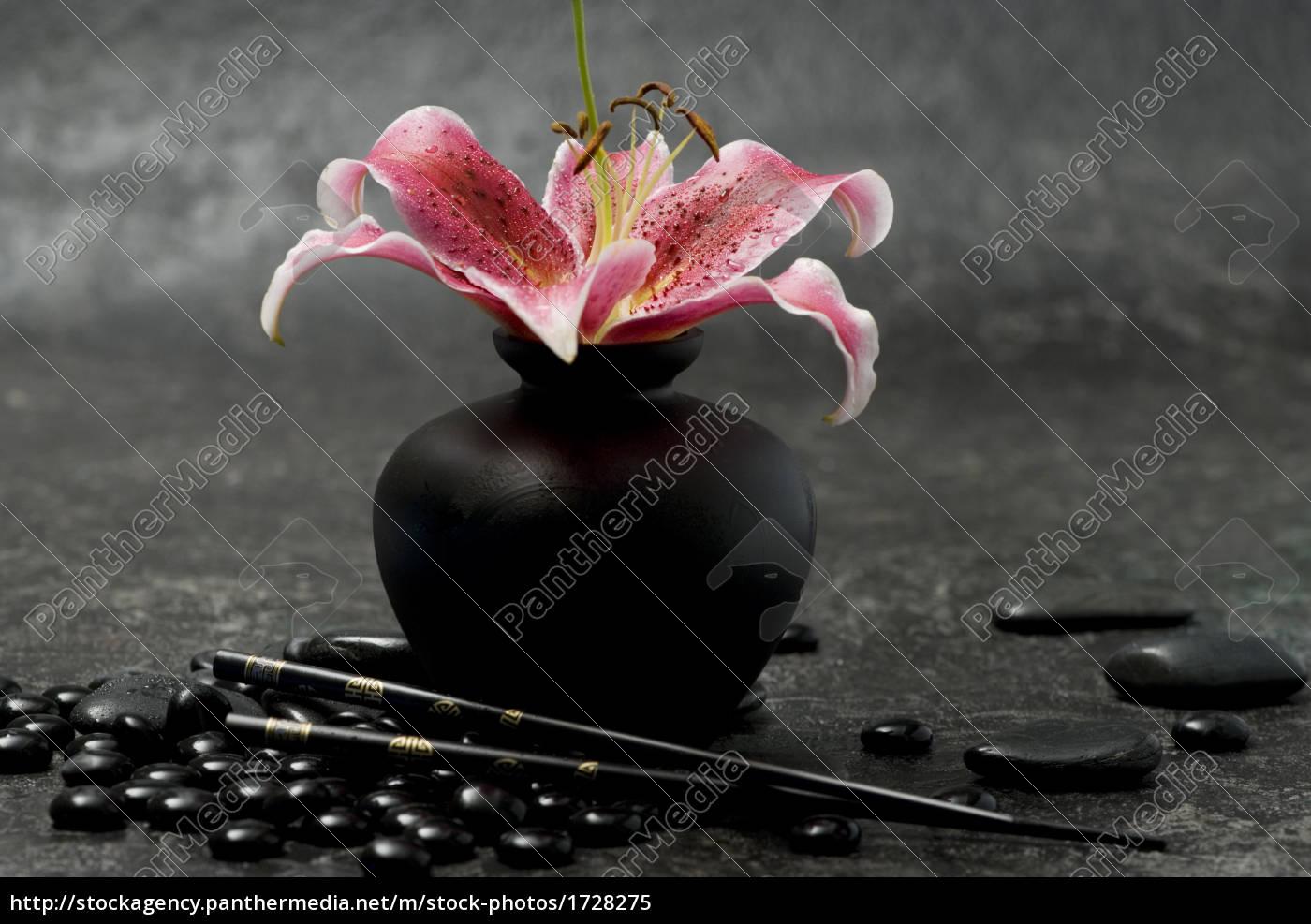 liliy, flower, still, life - 1728275