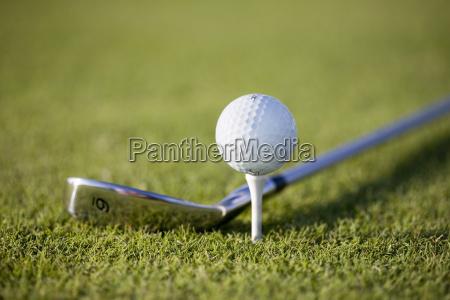 golfschläger, ii - 1768061