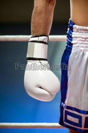 boxing - 1772003