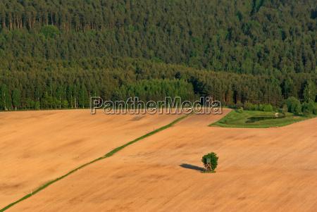 way through the fields