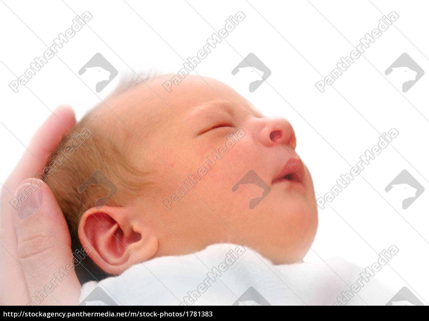 newborn, in, father's, hand - 1781383